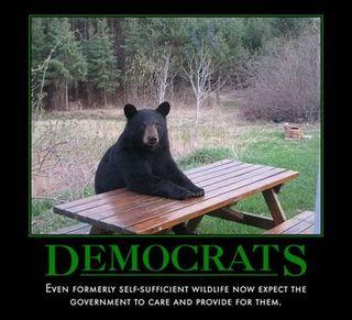 Bear-picnic-fixed-1