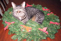 Greta_wreath
